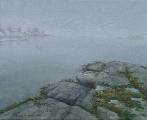 morgendis-ved-vannet