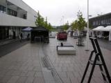 snaroydagen-2010-4