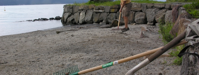 Fürst stranden renset