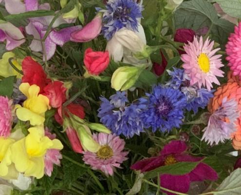 Blomstrende hverdag 1